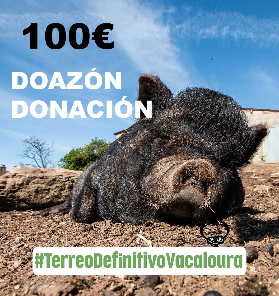 doa 100 euros á campaña do terreo definitivo para o santuario