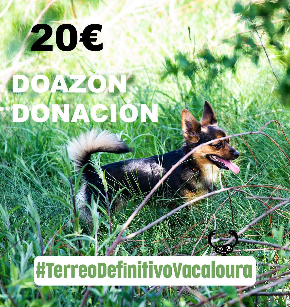 doa 20 euros á campaña do terreo definitivo para o santuario