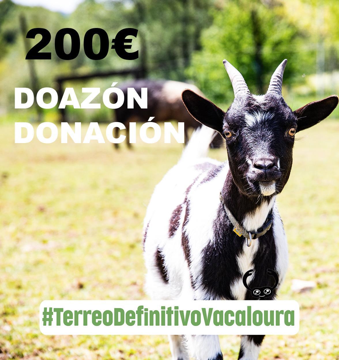 doa 200 euros á campaña do terreo definitivo para o santuario