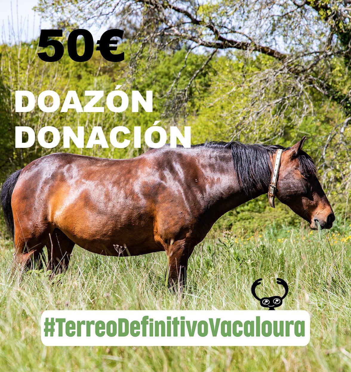 doa 50 euros á campaña do terreo definitivo para o santuario